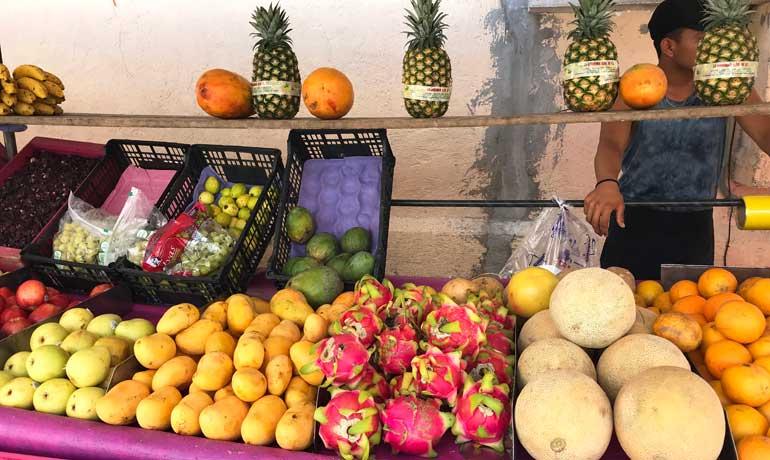 Puerto Morelos farmers market