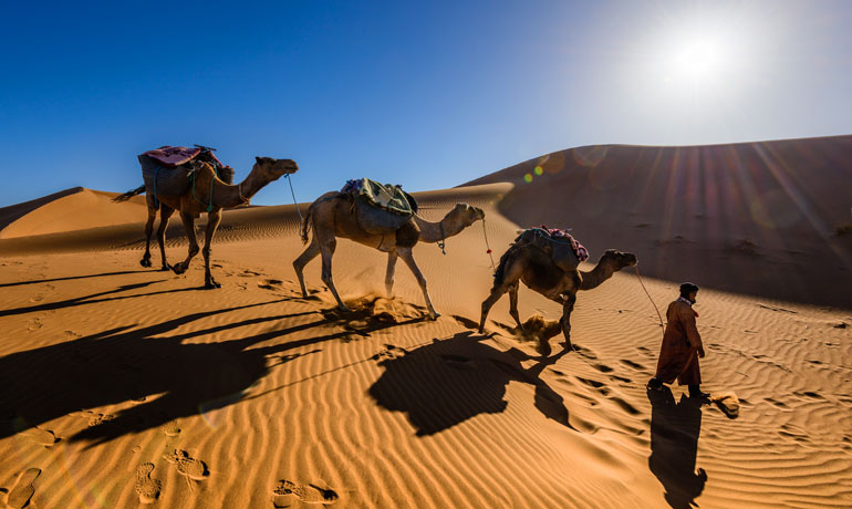 travel bucket list Sahara Desert