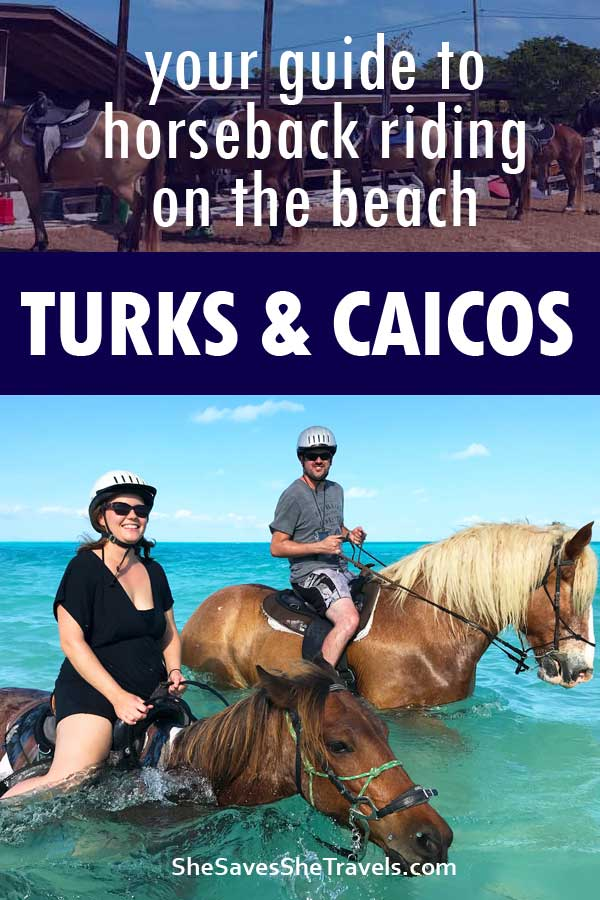 your guide to horseback riding on the beach turks and caicos
