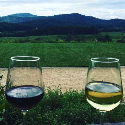 wine country in Charlottesville Virginia with mountains in background