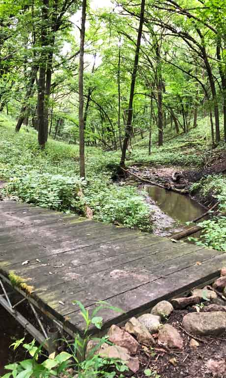 fort defiance state park hiking trail with bridge and trees