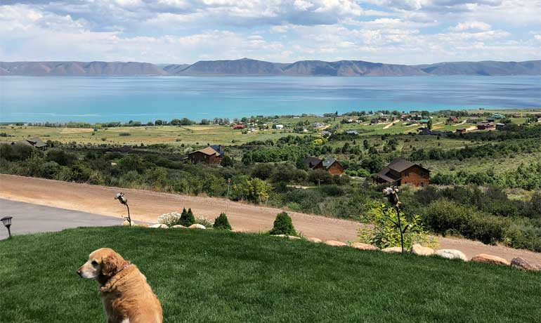 Bear Lake Idaho overlooking the lake with dog and lake homes