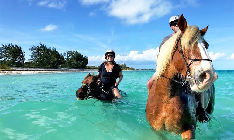 turks and caicos on a budget even including activities like horseback riding