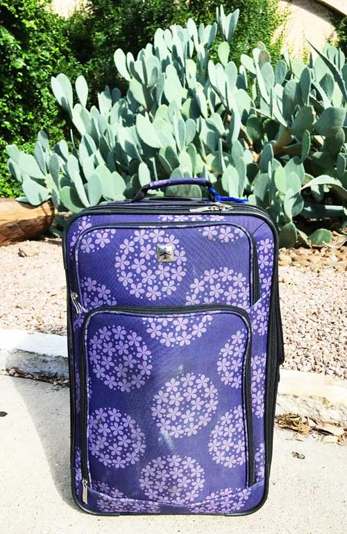 suitcase sitting outside with cactus in backgroun