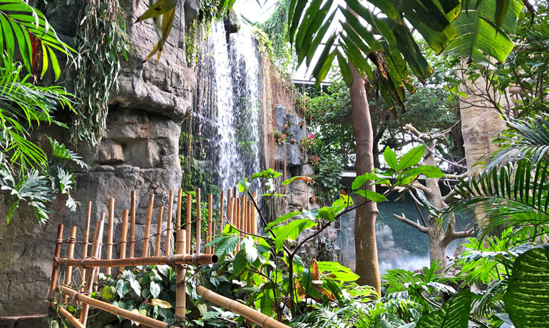 waterfall and lush greenery make a perfect backdrop for photos