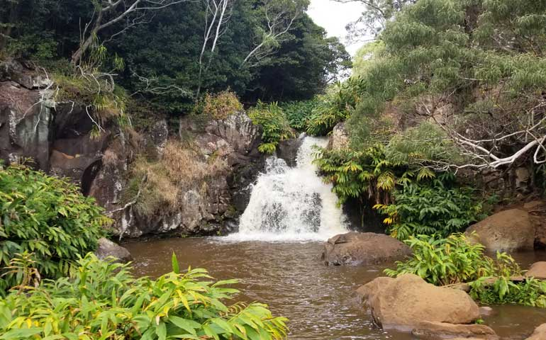 small waterfall at the top of Waipoo Falls