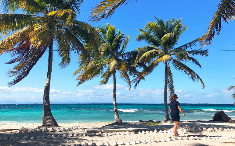 walking path on private island with palm tree background Laughing Bird Caye