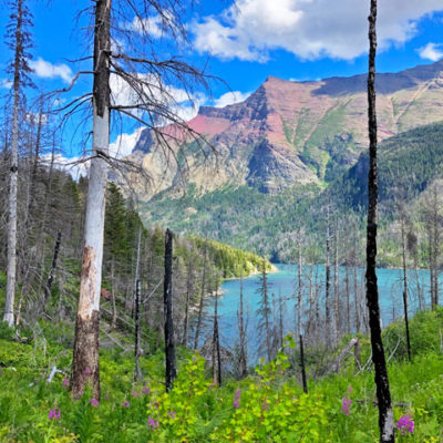 Glacier National Park Itinerary: 1 - 7 days   Top Sights for First-timers