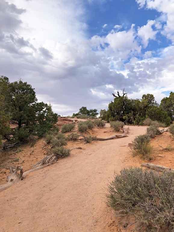 canyonlands trails