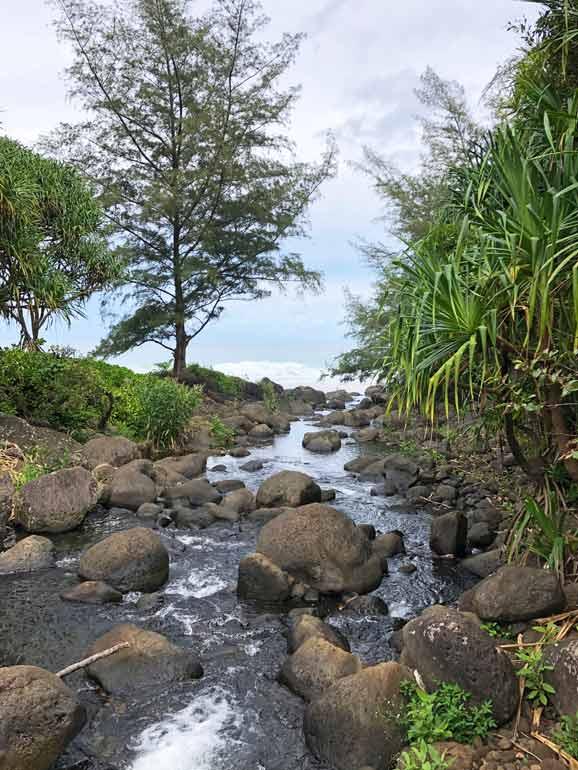 hanakapiai river