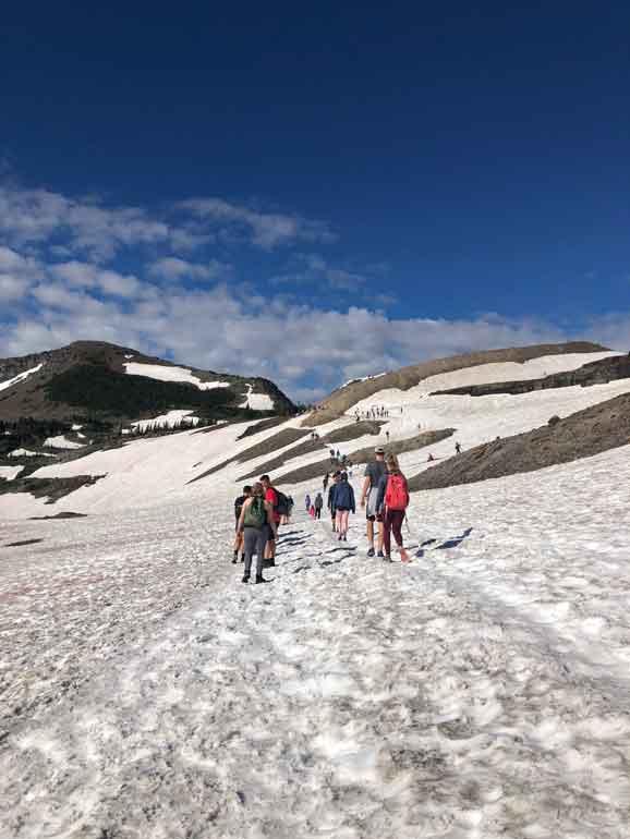 hiking hidden lake trail glacier national park