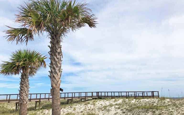 sand dunes gulf shores