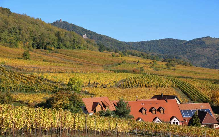 Alsace France countryside