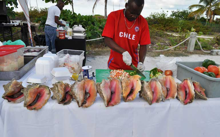 conch at fish fry