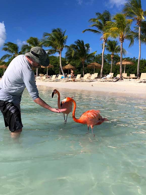 flamingo island aruba
