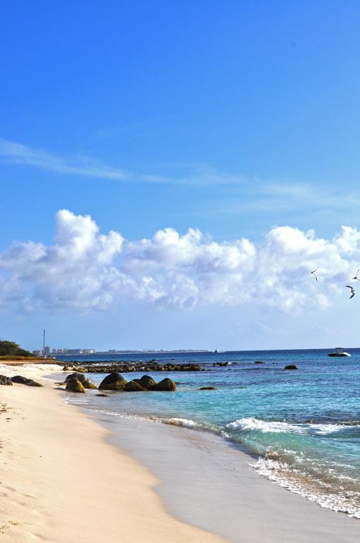 Aruba's Arashi Beach