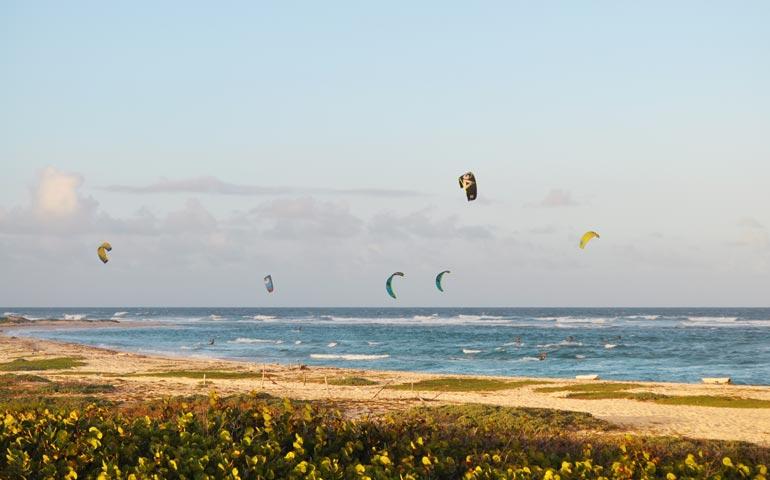 Boca Grandi Beach Aruba
