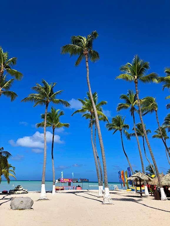 how expensive is aruba palm beach