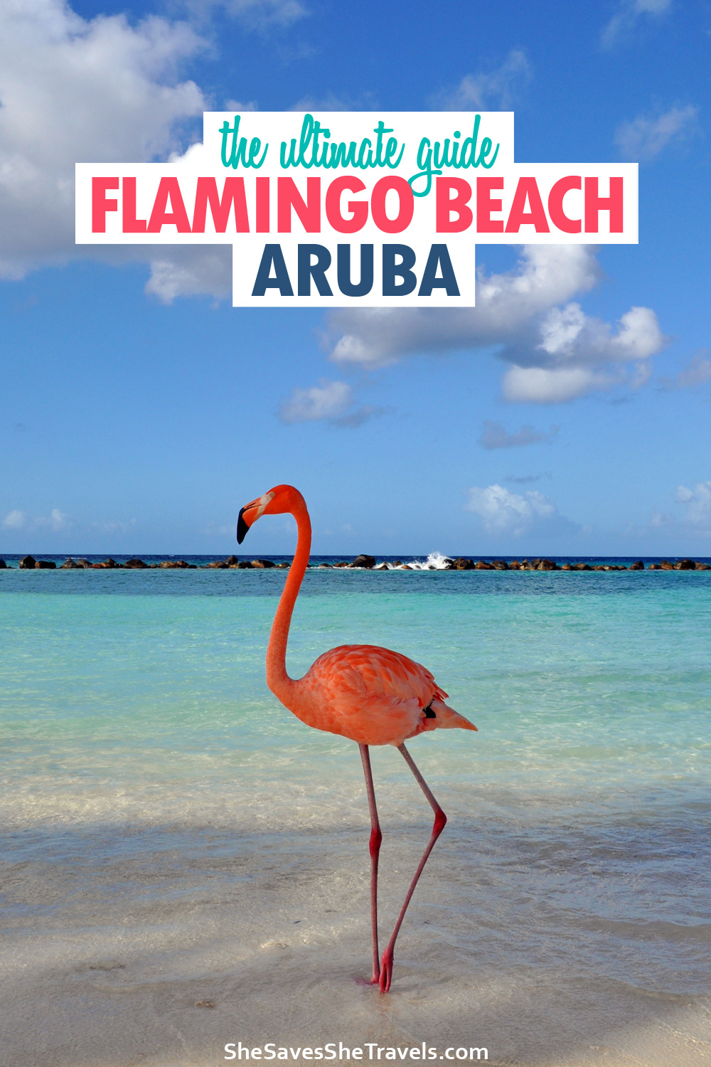 the ultimate guide Flamingo Beach Aruba