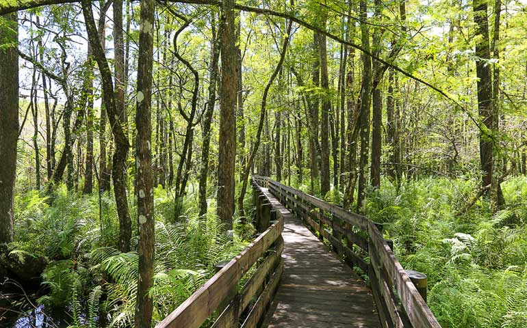 naples florida hikes