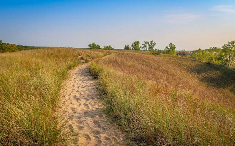 Indiana Dunes State Park Trail