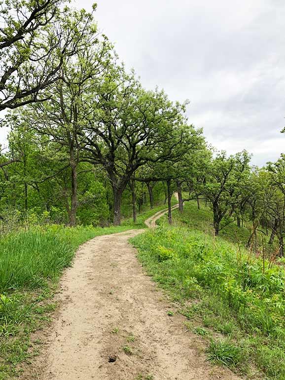 loess hills Iowa hiking trail