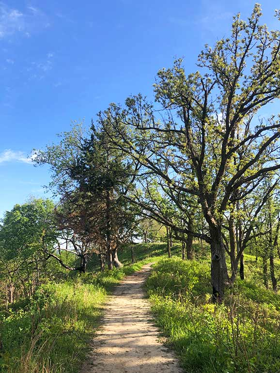 midwest hiking trails in summertime