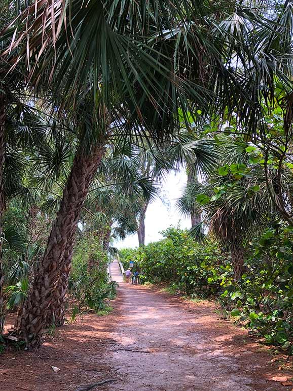 walking path to beach Anna Maria island