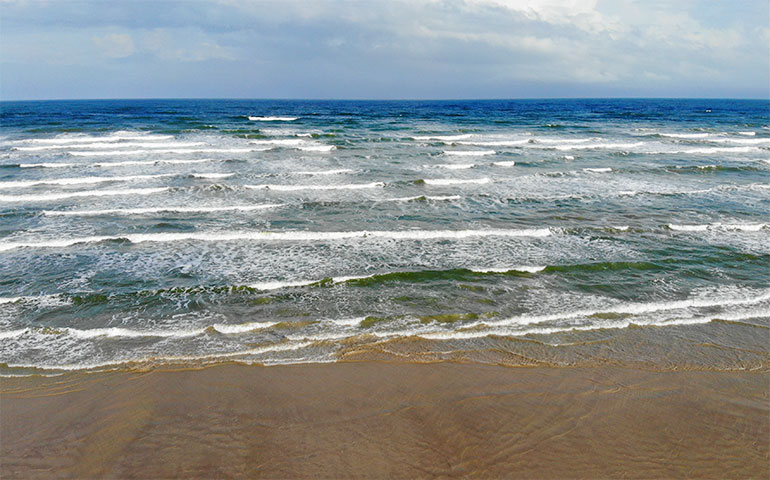 gulf coast beaches mustang island Texas