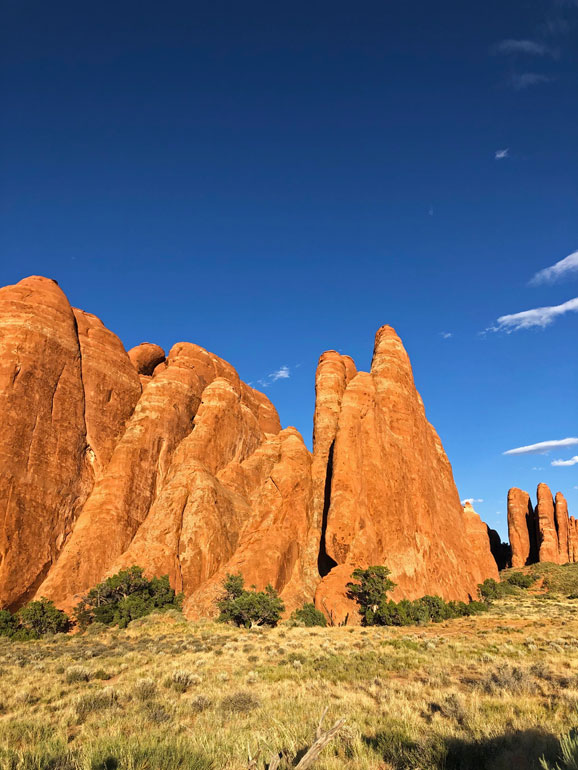 gorgeous desert