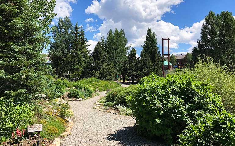 summer in Breckenridge botanical gardens