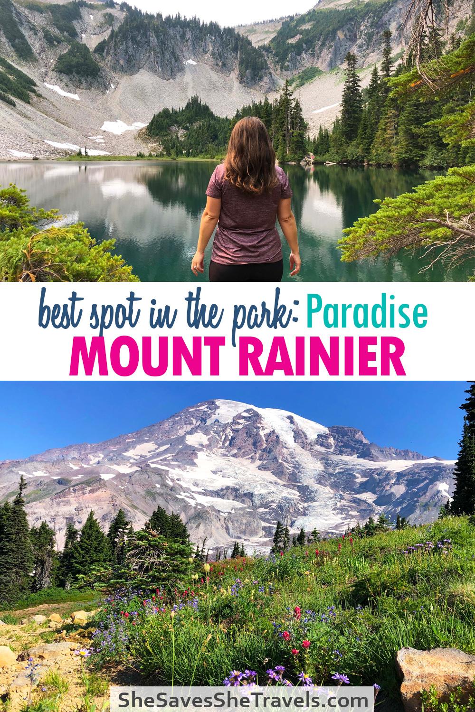 best spot in the park: paradise mount rainier