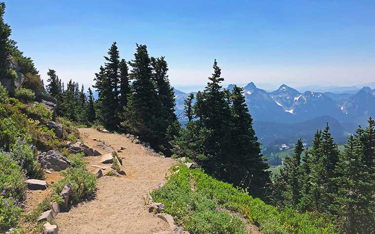 paradise Washington hiking