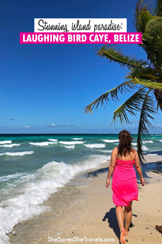 stunning island paradise laughing bird caye Belize